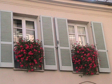 Ivy-leaved pelargoniums grace a window in Asti, Italy