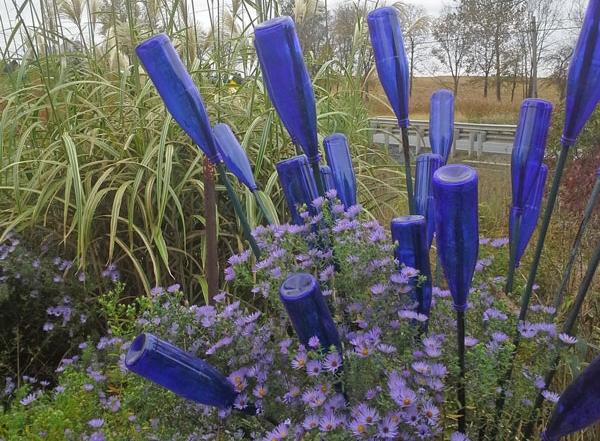 blue-bottle-tree
