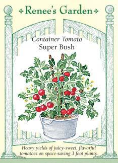 tomato-superbush-f