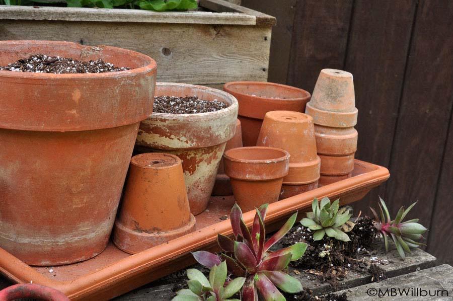 terracotta-pots-2