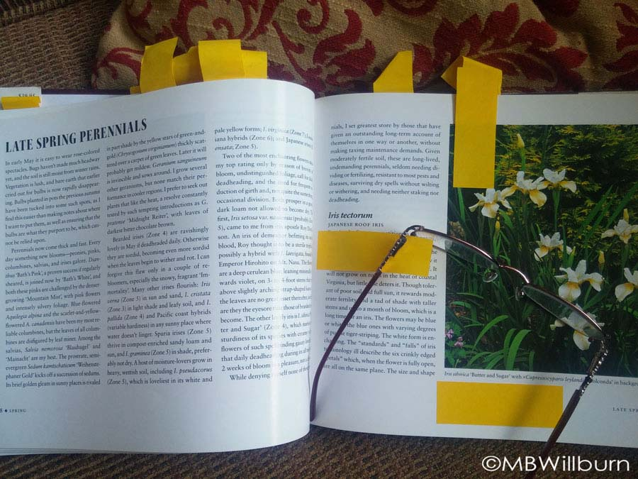 Well-thumbed, heavily marked and a fantastic resource: Pamela Harper's Time-Tested Plants.