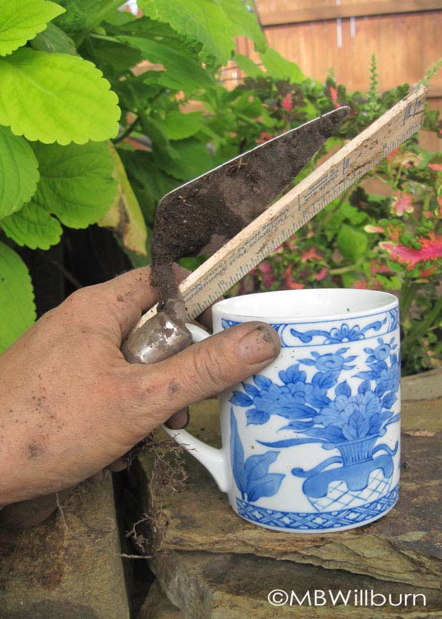 trowel and mug
