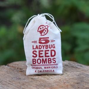 lady-bug-seed-bombs1