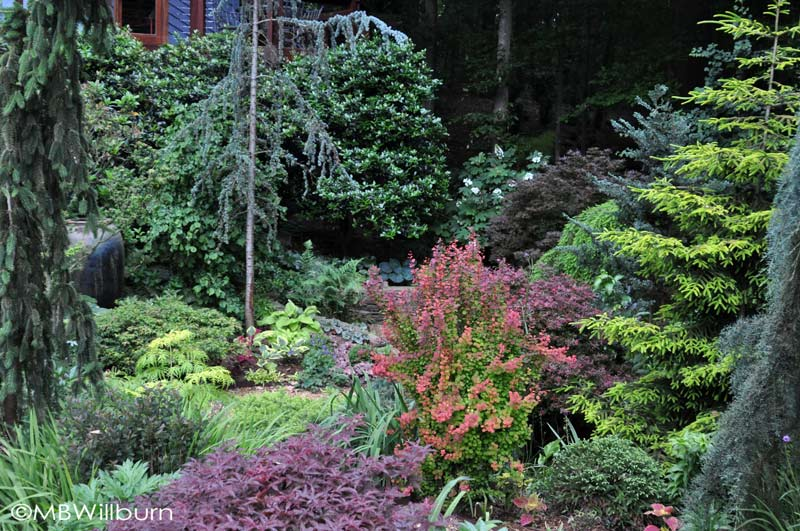 Creating intimate spaces within a bigger garden is challenging, but made easier with strong foliage plants that give at least three seasons to the gardener, sometimes four.
