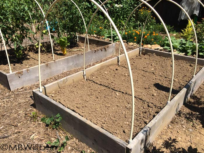 raised beds small town gardener