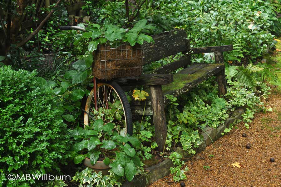 bike and bench in an Atlanta garden - preserving a sense of calm