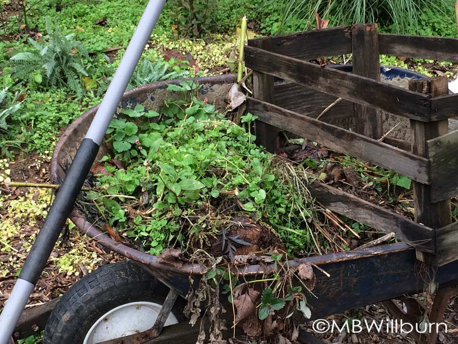 wheelbarrow, weeds, hoe, garden