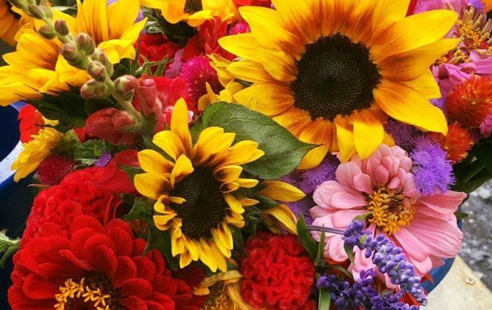 bouquets, flowers, cut flowers