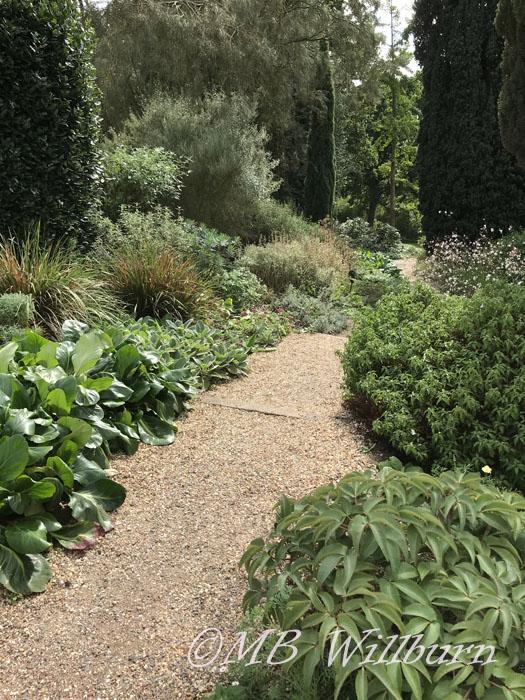 dry garden, beth chatto gardens, essex, british gardens, english gardens