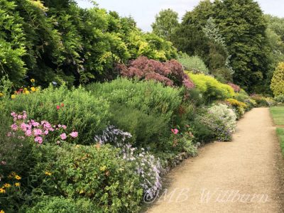 waterperry gardens, oxfordshire, mixed border, herbaceous border