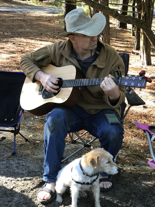guitar, beach, dog, camping