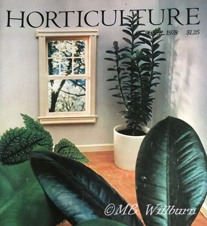 horticulture magazine, 1970s, houseplants, indoor gardens