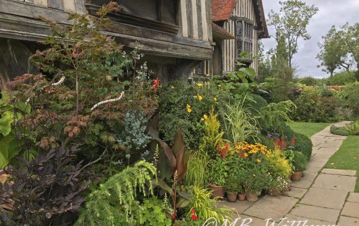 great dixter, front door, contianer garden