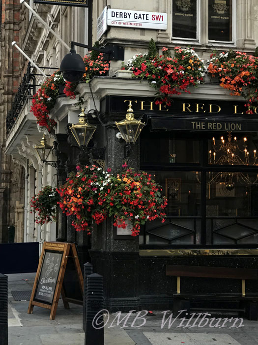 british pub with flowers, flowers, pub,
