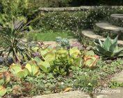 circular steps, luytens, succulents, great dixter