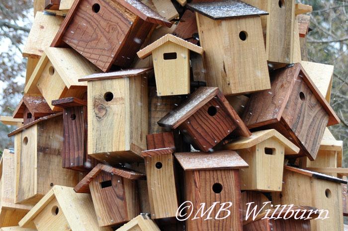 Longwood christmas, longwood gardens, longwood, birdhouses