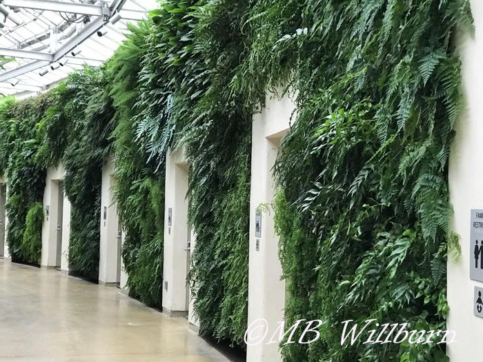 longwood, longwood christmas, longwood gardens, green wall, public restrooms,