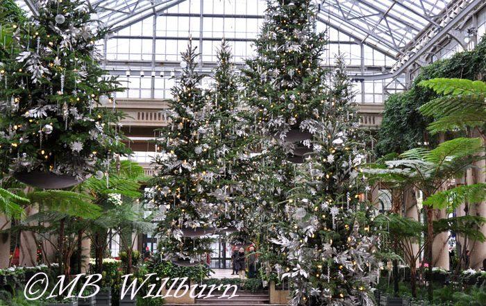 longwood, longwood christmas, floating christmas trees