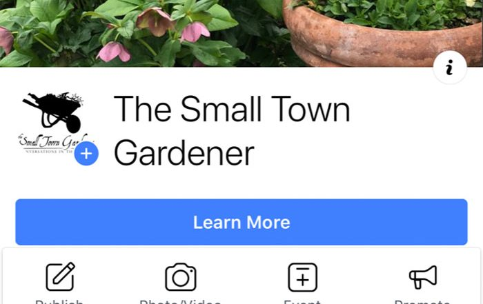 Small Town Gardener Facebook page