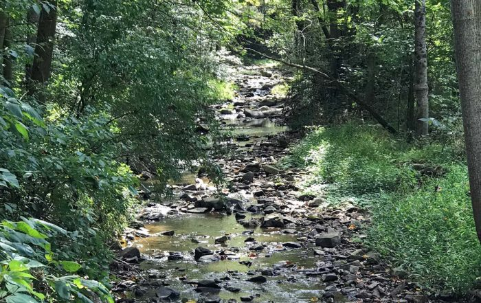 The creek and rural life at Oldmeadow