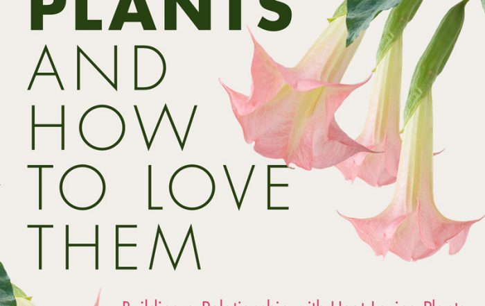 tropical plants and how to love them book