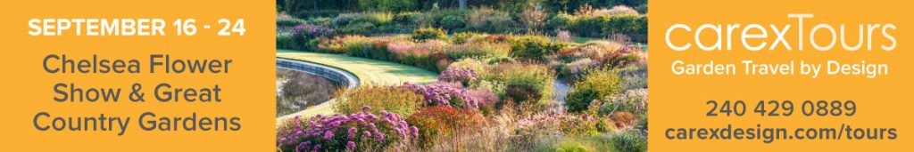 Carex tours Chelsea Tour and Great English Gardens September 2021